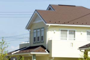 新築住宅に現れる虫