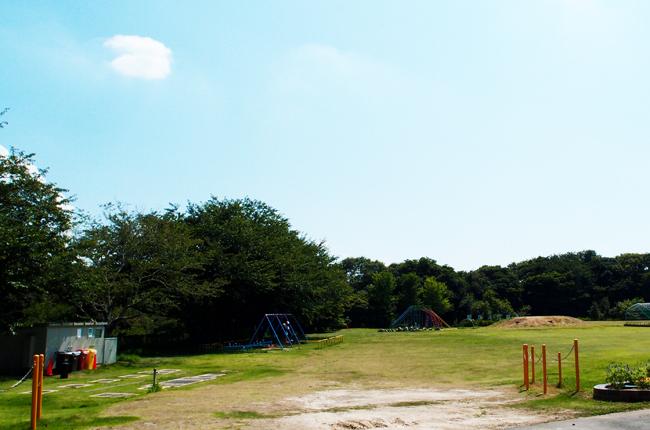 広い芝生の校庭